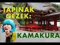 JAPONYA 'DA KAPSÜL OTELDE KALDIM! - YouTube