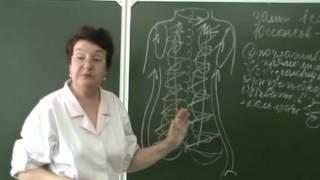 видео Классификация видов гимнастики и их характеристика