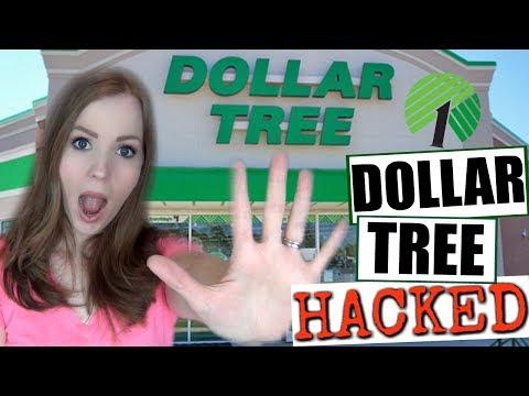 THE DOLLAR TREE HACKED!! | 5 Dollar Tree Hacks You NEED to Know Before Your Next Trip!