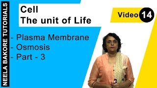 Cell - The unit of Life - Plasma Membrane - Osmosis - Part - 3