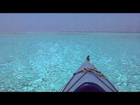 ゼリーのような海の中を進むカヌー