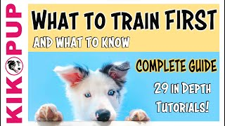COMPLETE GUIDE to PUPPY TRAINING  What to train FIRST