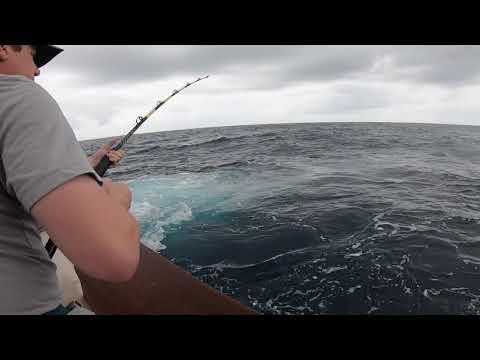 Virginia Beach Offshore Fishing Charters Mahi Dorado Trip