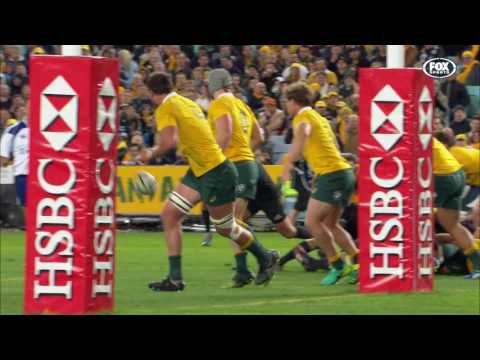 Rugby Championship 2016 Rd #1: Australia v New Zealand