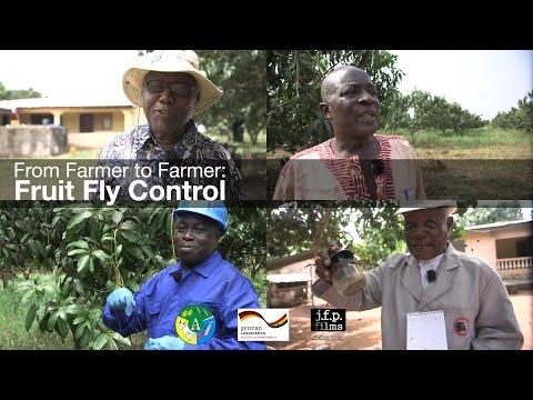 From Farmer to Farmer: Fruit Fly Control