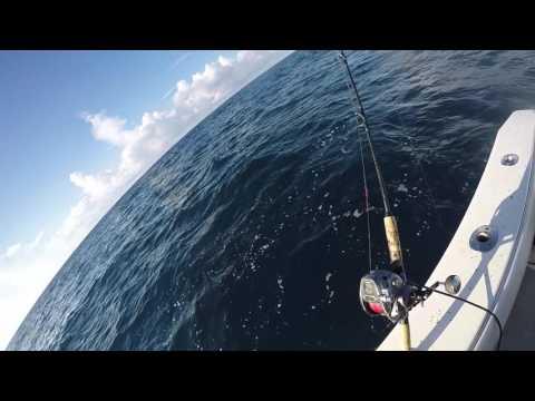 Deepsea Dive!