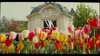 Tulip Mania - Visit us at Waldorf Astoria Amsterdam