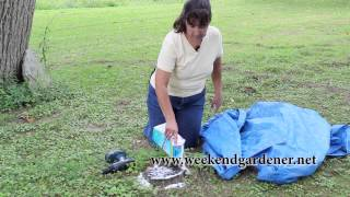 How to Remove a Tree Stump using Epsom Salt