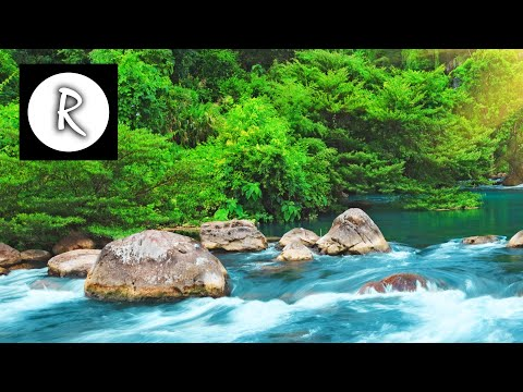 Relaxing Nature Sounds  Water Sound 24 Hours, Gentle River & Stream