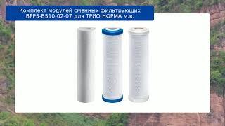 Комплект модулей сменных фильтрующих ВРР5-В510-02-07 для ТРИО НОРМА м.в. обзор