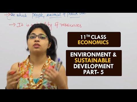 Environment & Sustainable Development - Part5 || Sustainable Development || Class XI || Hindi
