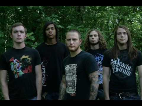 Persaeus - Alignment (Ex A Different Breed Of Killer) New Song 2010 mp3