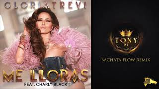 Gloria Trevi - Me Lloras ft. Charly Black  ( Bachata Flow Remix Dj Tony BFG )