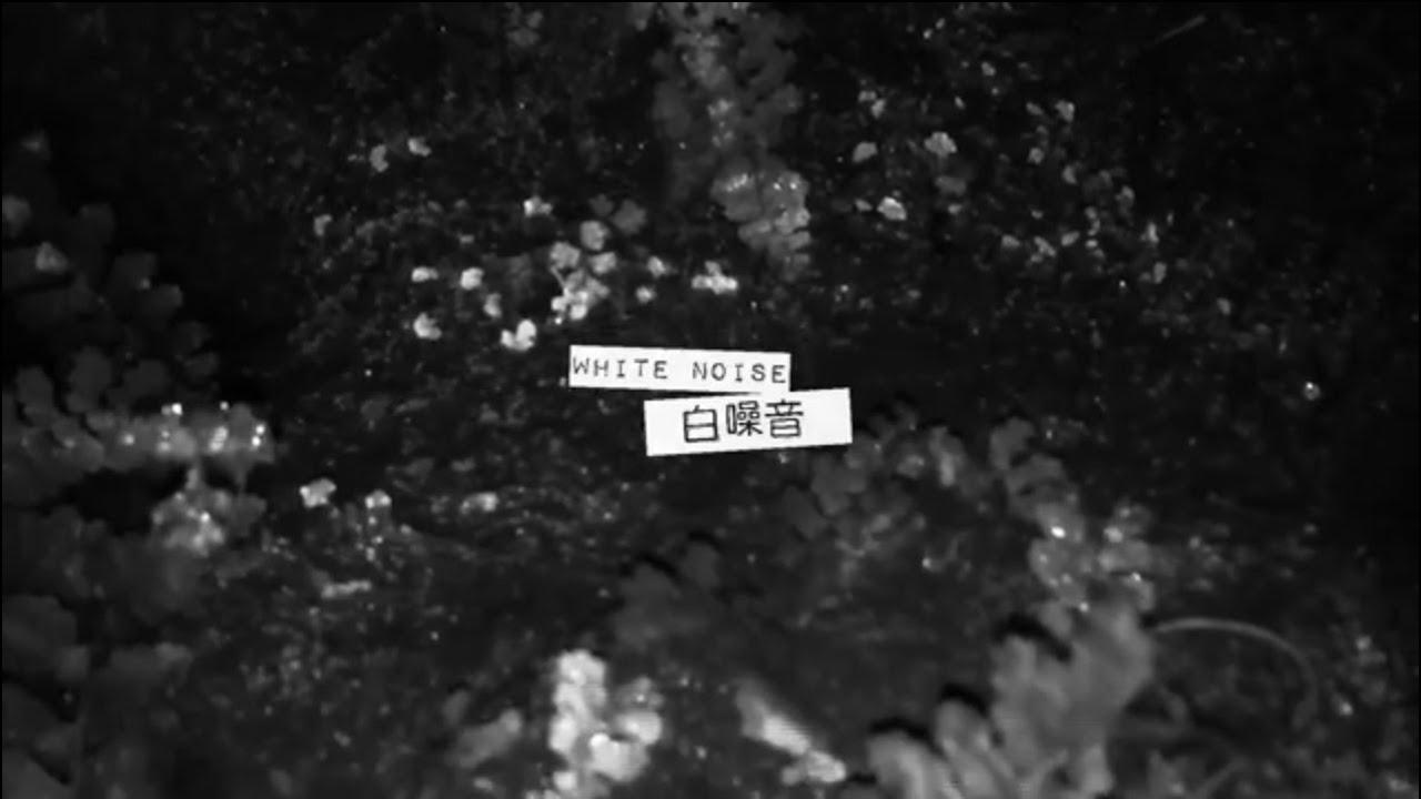 川秋沙 Goosander - 白噪音 White Noise - YouTube