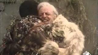 """Brano tratto dall'incompiuto serial TV """"Dimensione Alfa"""" del 1986/89, nel settimo episodio intitolato """"Una lacrima d'amore"""" (""""Mansion of the Beast"""") in cui l..."""