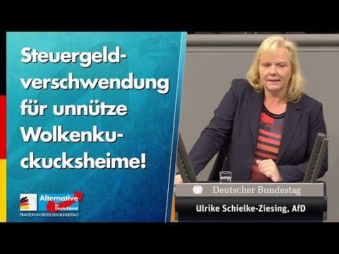 Steuergeldverschwendung für unnütze Wolkenkuckucksheime! - Ulrike Schielke-Ziesing - AfD