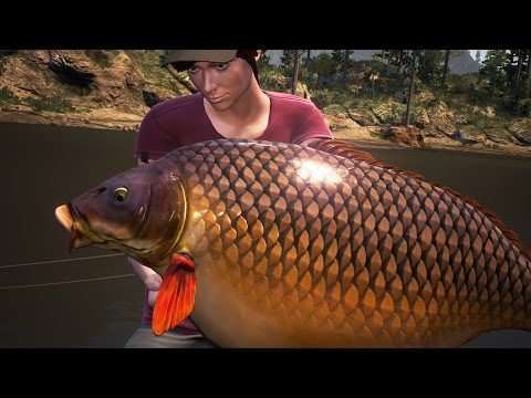 Dovetail Games Euro Fishing Gameplay #2 MULTI BIG CARP AND CATFISH Silure Boss HD PC
