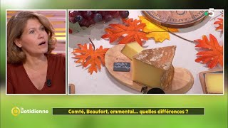 Download Video Comté, beaufort, emmental...quelles différences ? MP3 3GP MP4