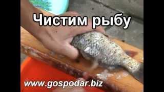 Автоклав. Консервирование рыбы в автоклаве