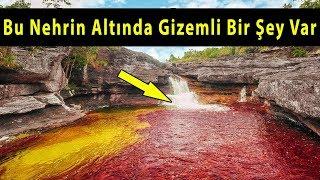 Suyunda Tehlike Olan 5 Gizemli Nehir
