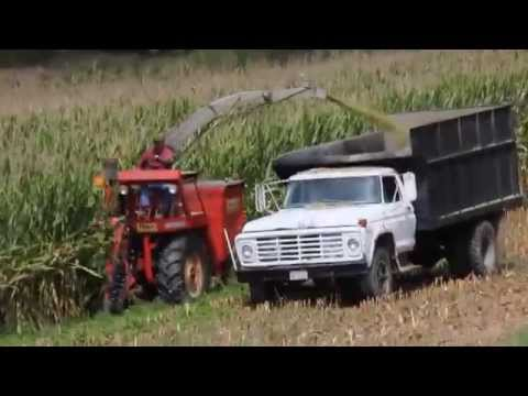 Fox Corn Chopper, Marshall, NC