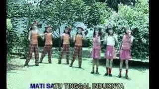 Tek Kotek Kotek Kotek - Lagu Anak-Anak Indonesia.flv