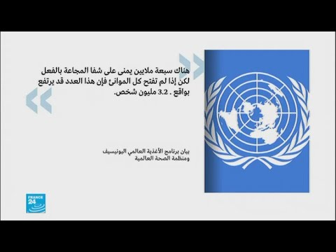 اليونيسيف: - سبعة ملايين يمني على شفا المجاعة في اليمن-  - 15:22-2017 / 11 / 17