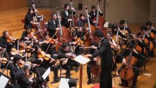 交響曲第5番(運命)/クラシック(ベートーヴェン)の動画