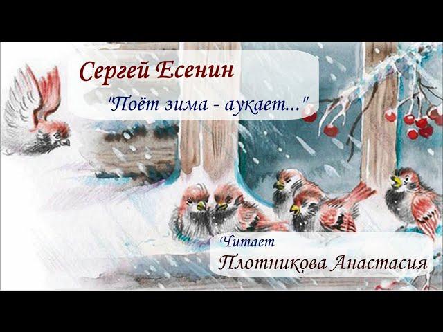 Изображение предпросмотра прочтения – АнастасияПлотникова читает произведение «Поёт зима-аукает...» С.А.Есенина