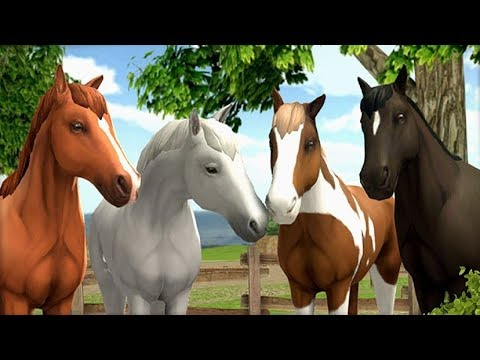 HorseWorld: Show Jumping By Tivola - Android / iOS - Gameplay