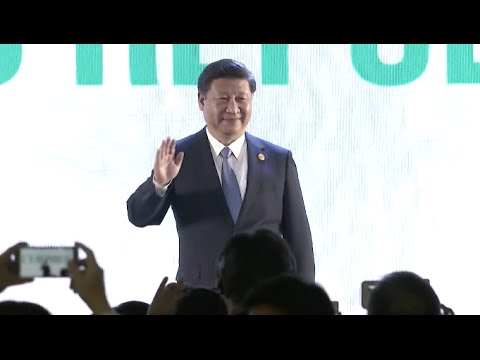 Chinese President Calls for Greater Role of Asia-Pacific at APEC Summit