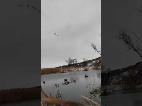 Nebraska Big Mo River
