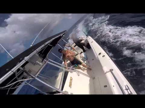 Bulls On Wall Street goes Fishing in St. Maarten