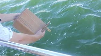 Merituhkaus - Burial at sea