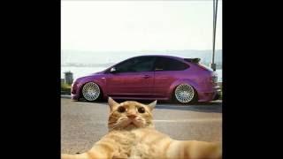 Ford Focus Modified in TURKEY (Reklamı Atlama!!! izle, tıkla)