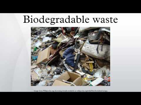 Biodegradable waste youtube for Waste material images