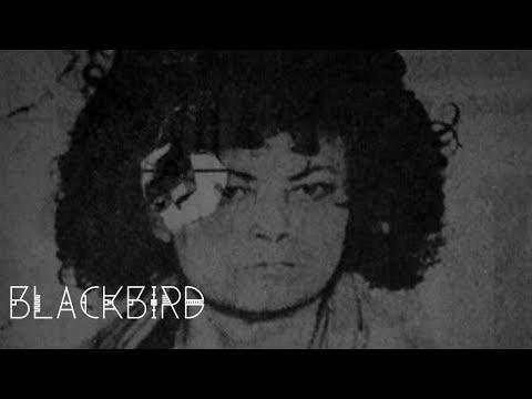 Υπόθεση Κωσταλέξι - Dark Code 7 - Blackbird