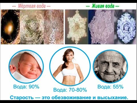 Рецепт Живой воды в домашних условиях / Виктор Максименков