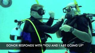 DPE SCUBA - SKILL ASSESSMENT #3 - OUT OF AIR OPTIONS