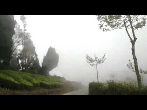 KERALA TOURISM - GODS OWN COUNTRY INDIA !!!
