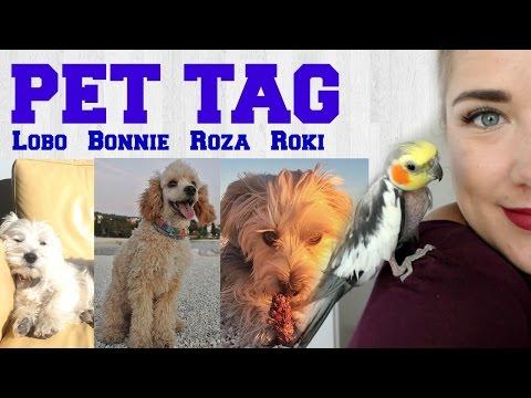 PET TAG vol. 2 - Debela Barbara