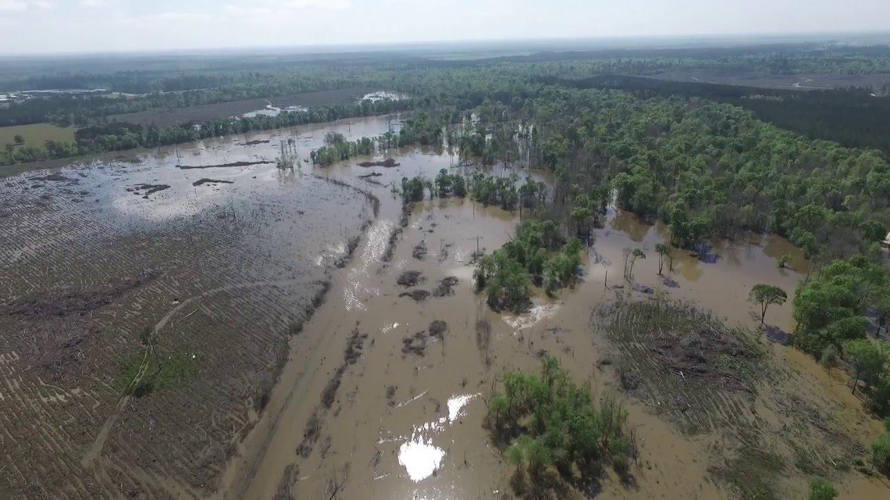 Pine island bayou flooding near sour lake tx 3 14 2016 for Sour lake motors tx