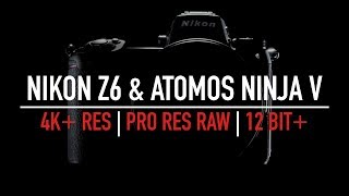 Nikon Z6 & Ninja V potentially game changing?   ProRes RAW   4K 12 Bit