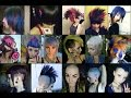 Sary Fairy's Hair Timeline (2008-2016)
