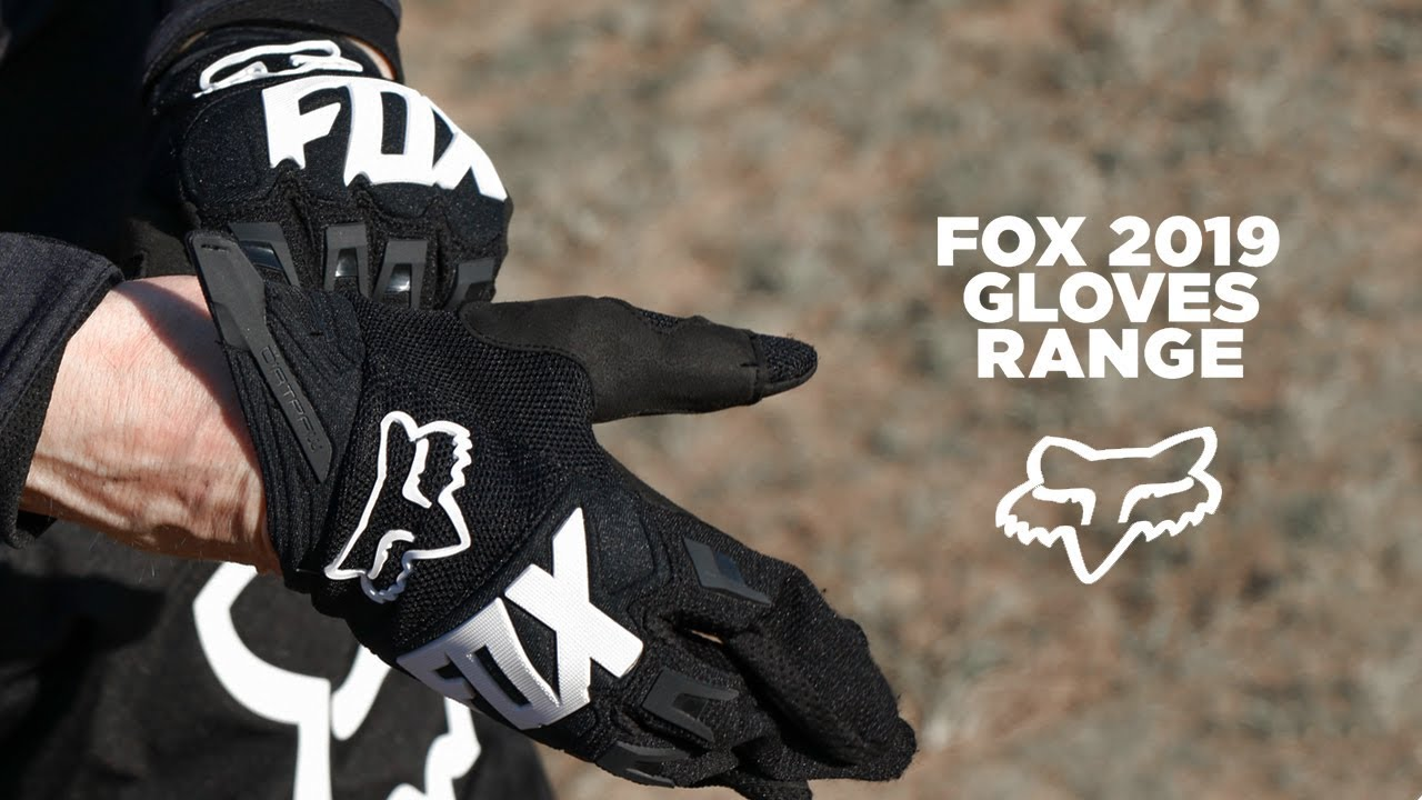 Dirtpaw Race MX Motocross Gloves FOX 2019 Adult