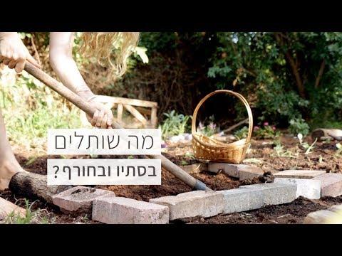 פרמקולצ׳ר - הכנת הגינה לקראת שתילות סתיו/חורף
