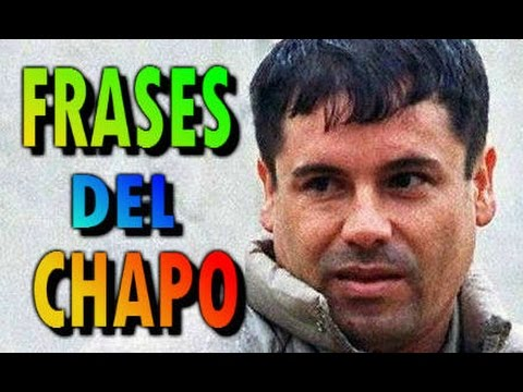 10 Frases Del Chapo Guzmán Youtube