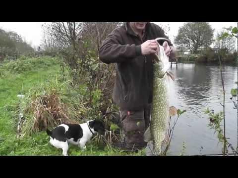 Pike Fishing - Free Spirit Myles Gascoyne Autumn Pike