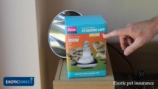 Download How to setup a tortoise table | Your tortoise housing in depth