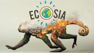 Cách trồng cây bằng Ecosia cứu Trái Đất và nguyên nhân cháy rừng Amazon